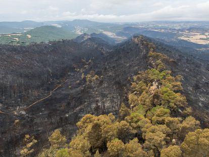Estado de las inmediaciones de Santa Coloma de Queralt tras el último incendio.