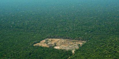 Área desforestada en el Amazonas, en septiembre de 2017.