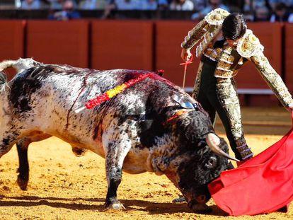 José Garrido, al natural ante su encastado primer toro.