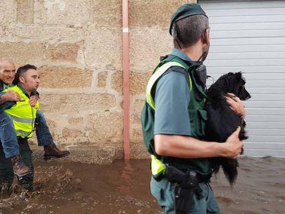 Dos agentes de la Guardia Civil trasladan a un vecino de Infesta y a un perro tras la riada.