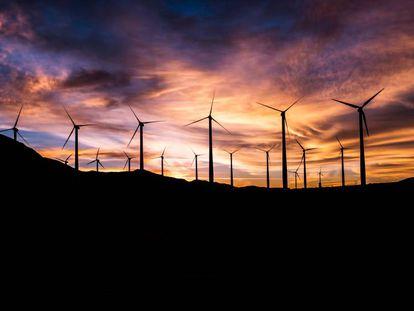 Un parque eólico, al anochecer.