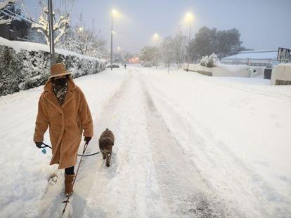 Una mujer pasea a un perro por la nieve el fin de semana pasado.
