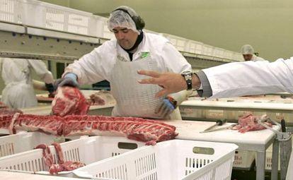 Un trabajado manipula carne en una planta de Campofrío en Burgos.
