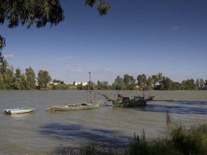 El río Guadalquivir a su paso por Coria.