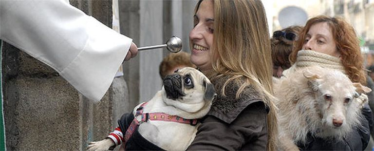 Un perro de lo más asustado recibe la bendición del párroco.