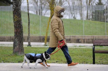 Una persona pasea a su mascota por Vitoria.