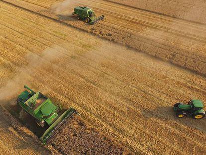 Una granja cooperativa en Alemania.