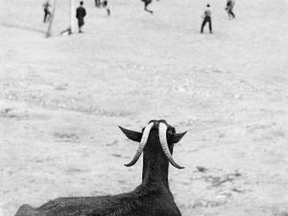 Periferia de Madrid, 1962.