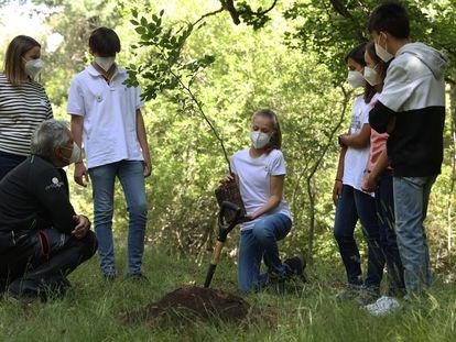 La princesa Leonor durante la plantación de uno de los árboles, en el acto del Programa Europeo #UnÁrbolporEuropa este miércoles en el Hayedo de Montejo.