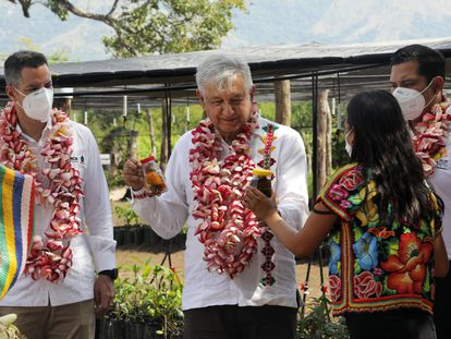 López Obrador, este sábado en San Pedro Tapanatepec, Oaxaca.