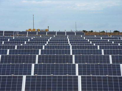 Vista del parque fotovoltaico de Son Salomó en Ciutadella, Menorca.