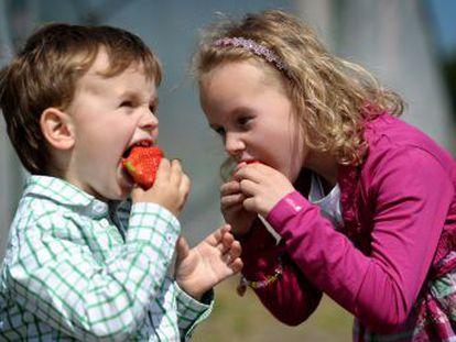 Aunque muchos crean que les ha tocado un niño  mal comedor , la actitud de los padres es clave