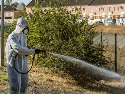 Un operario fumiga unos jardines en Coria del Río en un intento del Ayuntamiento por detener al virus del Nilo.