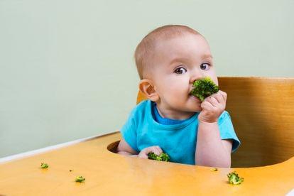 El brócoli dejaría de provocar el tradicional recelo en los menores si se acostumbraran a su olor y sabor desde la trona.