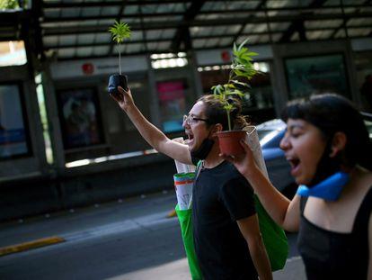Protesta contra la legalización de la marihuana en Ciudad de México el pasado 26 de noviembre.