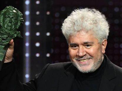 Pedro Almodóvar, con su premio a mejor guion original, uno de los siete 'goyas' que ha ganado 'Dolor y gloria'. En vídeo, declaraciones de los principales galardonados.