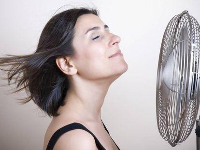 Seleccionamos una variedad de artículos de aire acondicionado distintos según la función y capacidades que necesites en casa.
