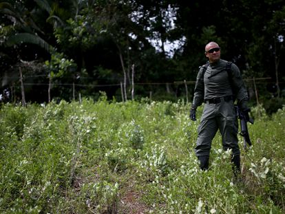 Un policía antinarcóticos durante una operación de erradicación de cultivos ilícitos en la costa suroeste de Colombia, el pasado febrero.