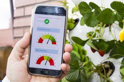 Algunas de las métricas que muestra la 'app' de Optimus Garden.