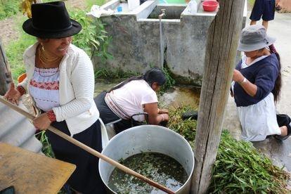 Varias mujeres de La Calera, en Ecuador, preparan geles desinfectantes a base de plantas durante la crisis del coronavirus.