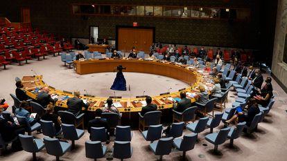 Miembros del Consejo de Seguridad de la ONU en la sede de Nueva York.