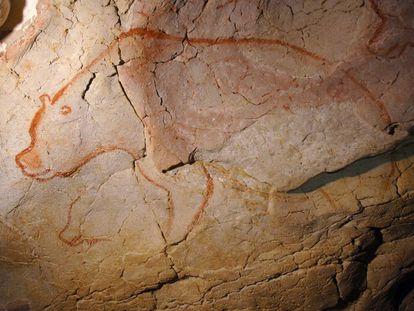 Un oso cavernario pintado hace más de 30.000 años en la cueva de Chauvet, en Francia.