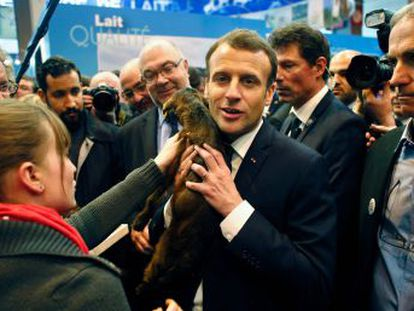 El presidente combate la imagen de urbanita en su primer Salón de la Agricultura, clave en la política francesa