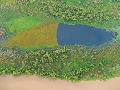 Vista aérea del Delta del Paraná.