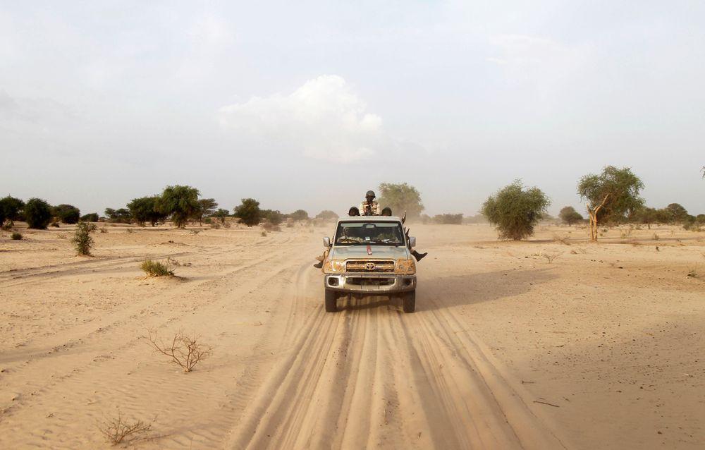 Níger anuncia la muerte de 75 miembros de Boko Haram en dos operaciones