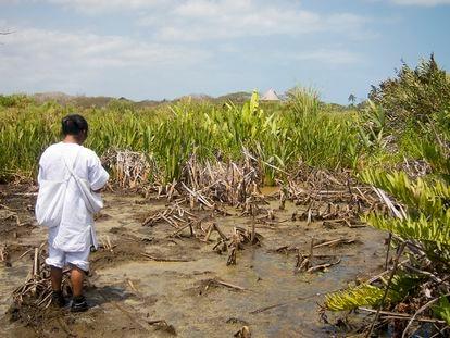 Sierra Nevada de Santa Marta, Colombia. La gestión de los kogi ha convertido un vertedero pantanoso en un lago de agua dulce.