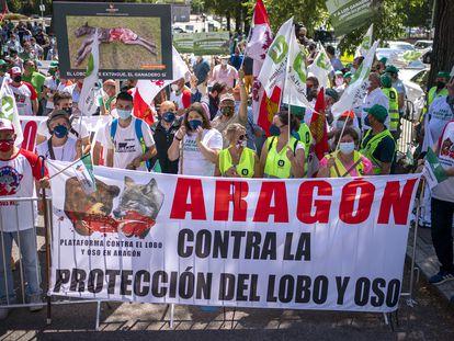 Ganaderos protestan contra el lobo ante al Ministerio para la Transición Ecológica y el Reto Demográfico.