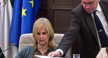 García Pelayo observa una documentación que le han entregado durante el pleno de este lunes.