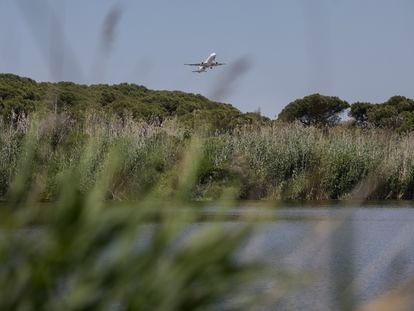 El espacio de La Ricarda, en el Delta del Llobregat.