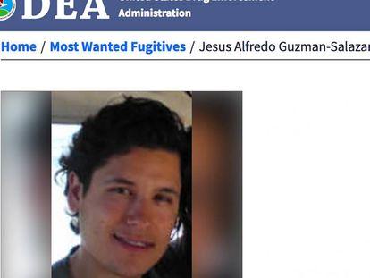 Ficha de la DEA contra Jesús Alfredo Guzmán Salazar.