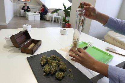 Socios en un club de fumadores, donde se consume marihuana y hachís, en Madrid.