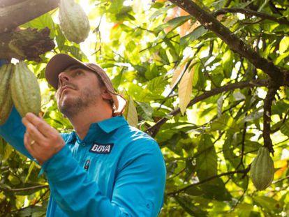 El chef Jordi Roca durante su expedición en el Amazonas para encontrar cacao.