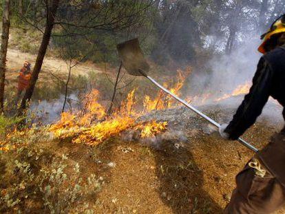 Un brigadista apaga las llamas en el incendio de La Torrre de les Maçanes el pasado domingo 12 de agosto