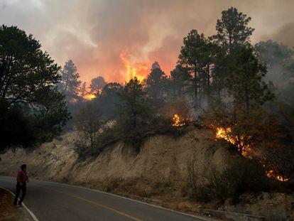 Vista del incendio que afecta el Estado de Nuevo León, en el norte de México.