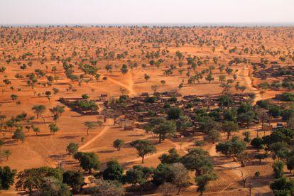 La mayoría de estos árboles en el Sahel de Mali son invisibles para la mayor parte de los satélites.