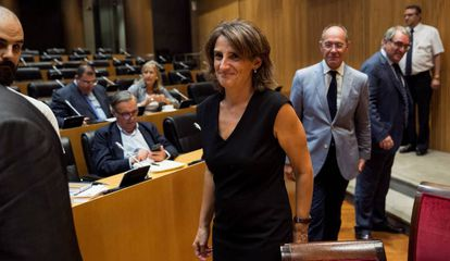 La ministra Teresa Ribera, en el Congreso.