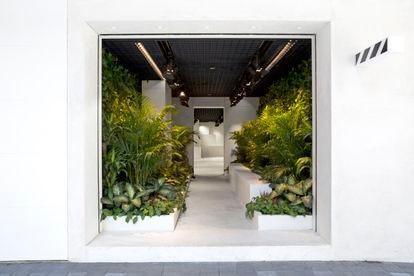 Stanescu y Dong- Ping Wong decidieron dedicar un tercio de la tienda de Off White de Hong Kong a hacer un jardín.