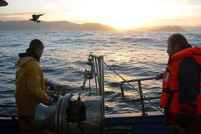 Un turista observa cómo un marinero maneja las nasas donde quedan atrapados los pulpos.