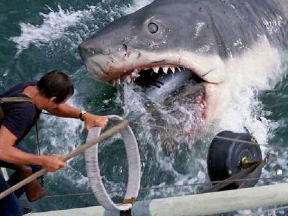 El sheriff Brody se enfrenta al tiburón, al final de la película.