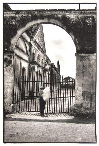 Una de las imágenes de Lange que se pueden ver en Barcelona.