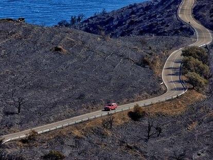 Un automóvil circula por la carretera que discurre por la zona que ha ardido en el incendio del parque natural de Cap de Creus (Girona)