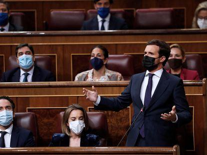 El líder del PP, Pablo Casado, durante una sesión de control al Gobierno en el Congreso.