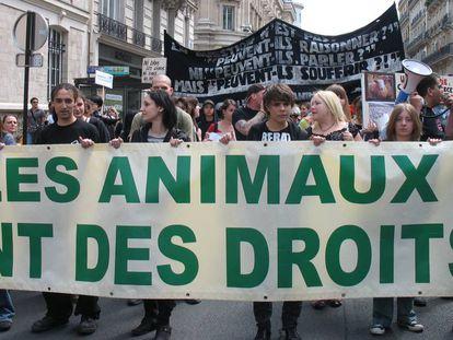 Desde la celebración de la Veggie Pride en París en el 2001 el ambiente ha cambiado en Francia en relación a los animales domésticos
