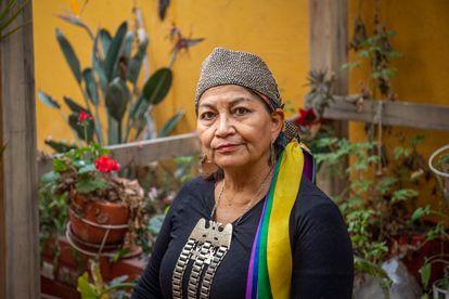 La constituyente chilena Elisa Loncón, en el patio de su casa de la comuna de Peñalolén, Santiago, el 1 de julio de 2021.