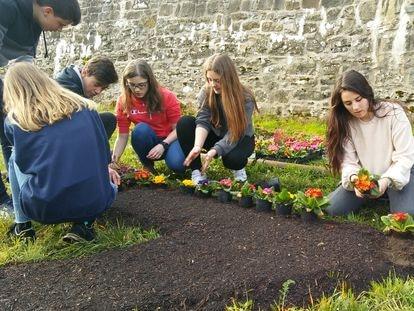 Los alumnos de 2º de la ESO del colegio Sagrado Corazón, en Pamplona, participan en el diseño y plantación de unos jardines.