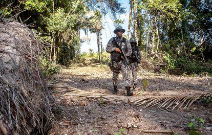 Agentes de la Fuerza Nacional buscan a las personas que deforestan una zona protegida de la Amazonia.